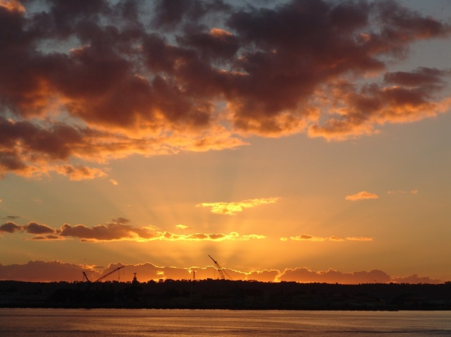 Sunset with Cranes San Diego Bay 6 December 2013