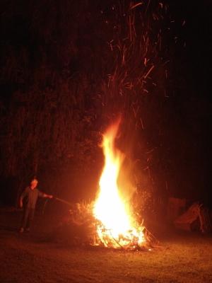 Bobby controls tree-side of bonfire Michigan, 2014